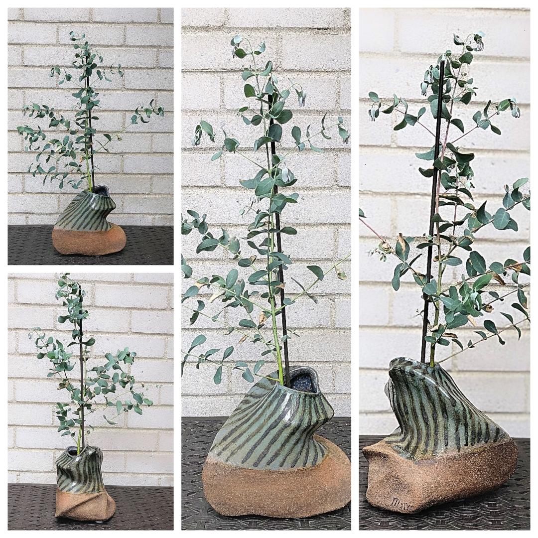 Raku and Living Eucalyptus